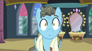 Wind Rider hears Rarity S5E15
