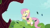 Fluttershy worried S2E22