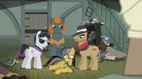 Daring Do incapacitated S4E04