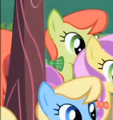 Peachy Sweet among other Apple Family members S1E01.png