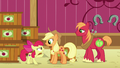 "Apple Bloom ""never told a lie in your whole life!"" S6E23.png"