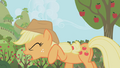 Applejack Why of all the S1E04.png