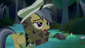 Daring Do in leafy disguise S4E04.png