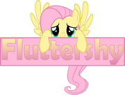 FANMADE Fluttershy banner by zacatron94