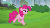 "Pinkie Pie ""I know what this is about"" S6E3"