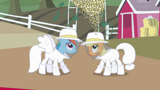 File:Rainbow Dash and Applejack beekeeper suit reveal S4E03.png