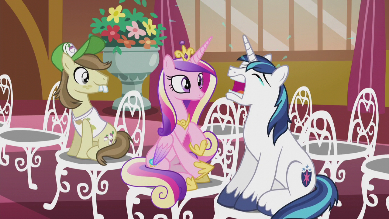 Image result for cadence and shining armor