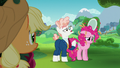 Applejack spying on Pinkie and Svengallop S5E24.png