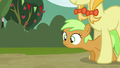 Filly with older mare S3E8.png