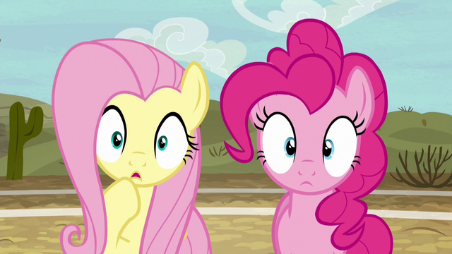 File:Fluttershy and Pinkie Pie in dull surprise S6E18.png