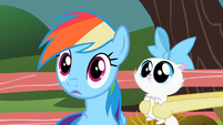 Rainbow Dash give thought S2E7