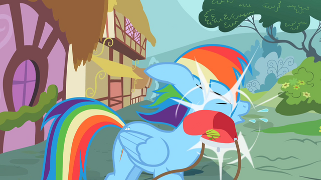 File:Rainbow Dash Slapped by a purse S2E8.png