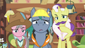 Expert ponies confused by Fluttershy's vision S7E5.png