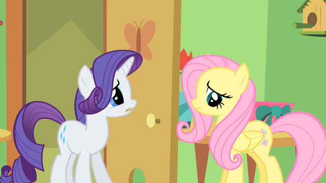 File:Rarity and Fluttershy S1E20.png