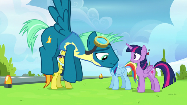 File:Sky Stinger hovers by with destroyed confidence S6E24.png