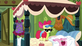 Apple Bloom with shades on S3E4.png