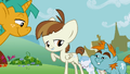 Featherweight celebrating his cutie mark S2E23.png