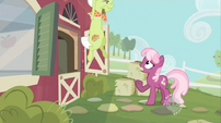 Granny Smith rising S02E12