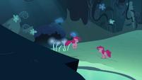 Pinkie Pie double hopping towards Pinkie Pie S3E03