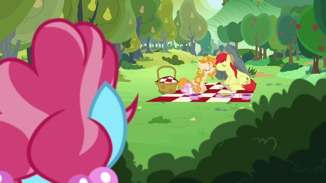 File:Bright Mac and Pear Butter about to kiss S7E13.png