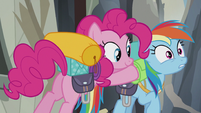 Pinkie putting stuff on Rainbow S5E8