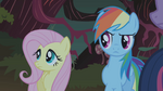Fluttershy and Rainbow Dash S01E02