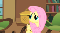 Fluttershy with her basket S01E22