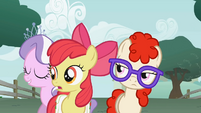 Apple Bloom where did you come from? S1E12