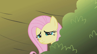 "Fluttershy ""it's so steep"" S1E07"
