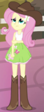 Fluttershy rodeo outfit ID EG2.png