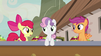 "Apple Bloom ""that must be Sugar Belle"" S7E8"