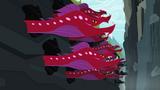 Quarray eel