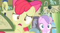 Apple Bloom surprised by Granny Smith's arrival S2E12.png
