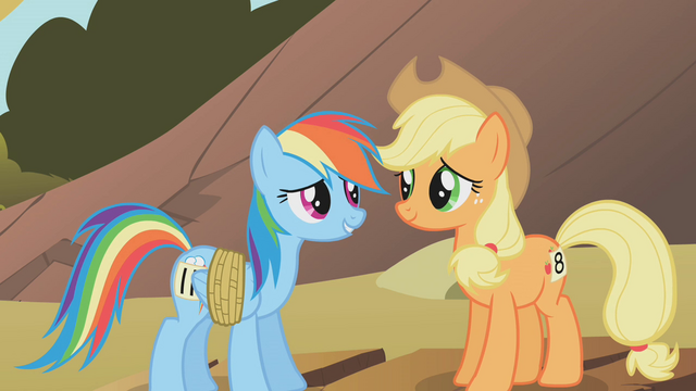 File:Applejack and Rainbow Dash3 S01E13.png