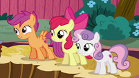 "Scootaloo suggesting ""a pirate?"" S6E19"