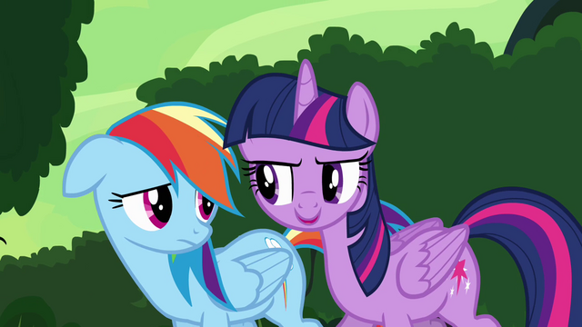 "File:Twilight and Rainbow ""she might need it anyway"" S4E04.png"