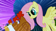 Fluttershy staring at chickens S01E17
