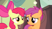 Scootaloo looks at Apple Bloom S4E19