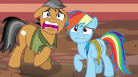Rainbow Dash and Quibble Pants scared S6E13