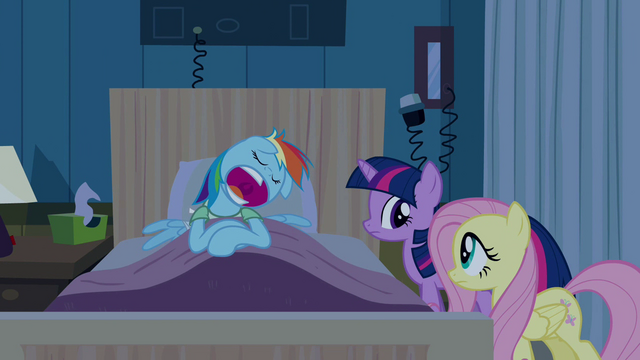 File:Rainbow Dash feigning snoring S2E16.png