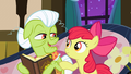 Apple Bloom asking Granny about the family memories S3E8.png