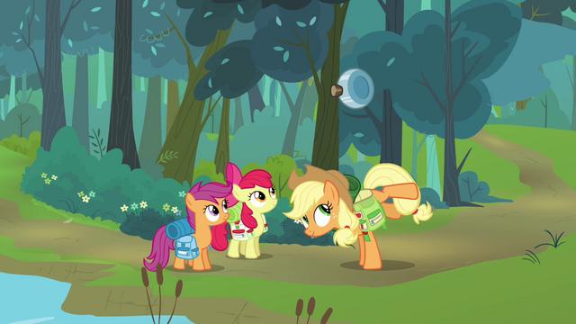 File:Applejack Canteen S03E06.png