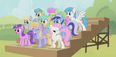 Derpy Crowd S2E5