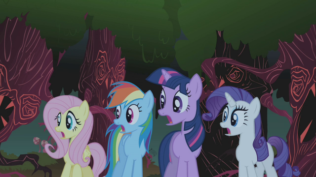File:Fluttershy, Rainbow Dash, Twilight and Rarity gasp S01E02.png