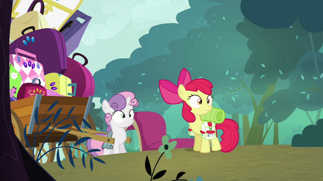 File:Apple Bloom and Sweetie Belle looking S3E06.png