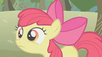 Apple Bloom disappointed S1E12