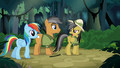 "Daring Do ""who are you again?"" S6E13.png"