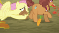 Fluttershy saves the squirrel S5E23.png