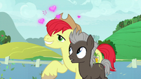 Bright Mac hopelessly in love with Pear Butter S7E13