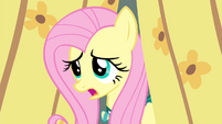 "Fluttershy ""I'll get there someday"" S4E14"